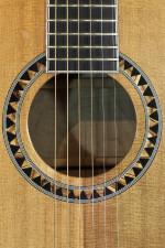 guitar-244-close2